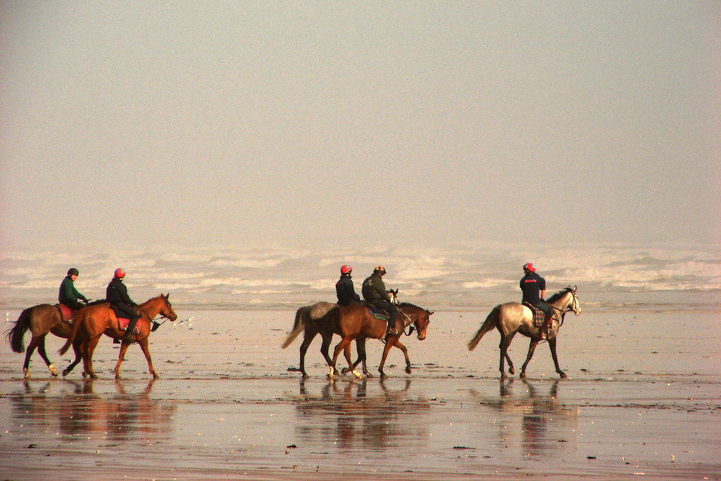 Horseback riding on the West Sands